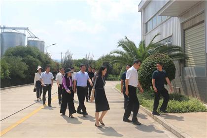 http://www.kmshsm.com/wenhuayichan/93471.html